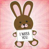 I Miss You Messages for Girlfriend and Romantic Miss You Images for Her